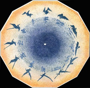 Pelican Spatter Study Praxinoscope Disk, 2009